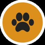 pozikan-peluqueria-canina-salburua-vitoria-limpieza-almohadillas