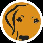 pozikan-peluqueria-canina-salburua-vitoria-limpieza-lagrimales-perro
