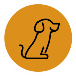pozikan-peluqueria-canina-salburua-vitoria-vaciado-glandulas-anales