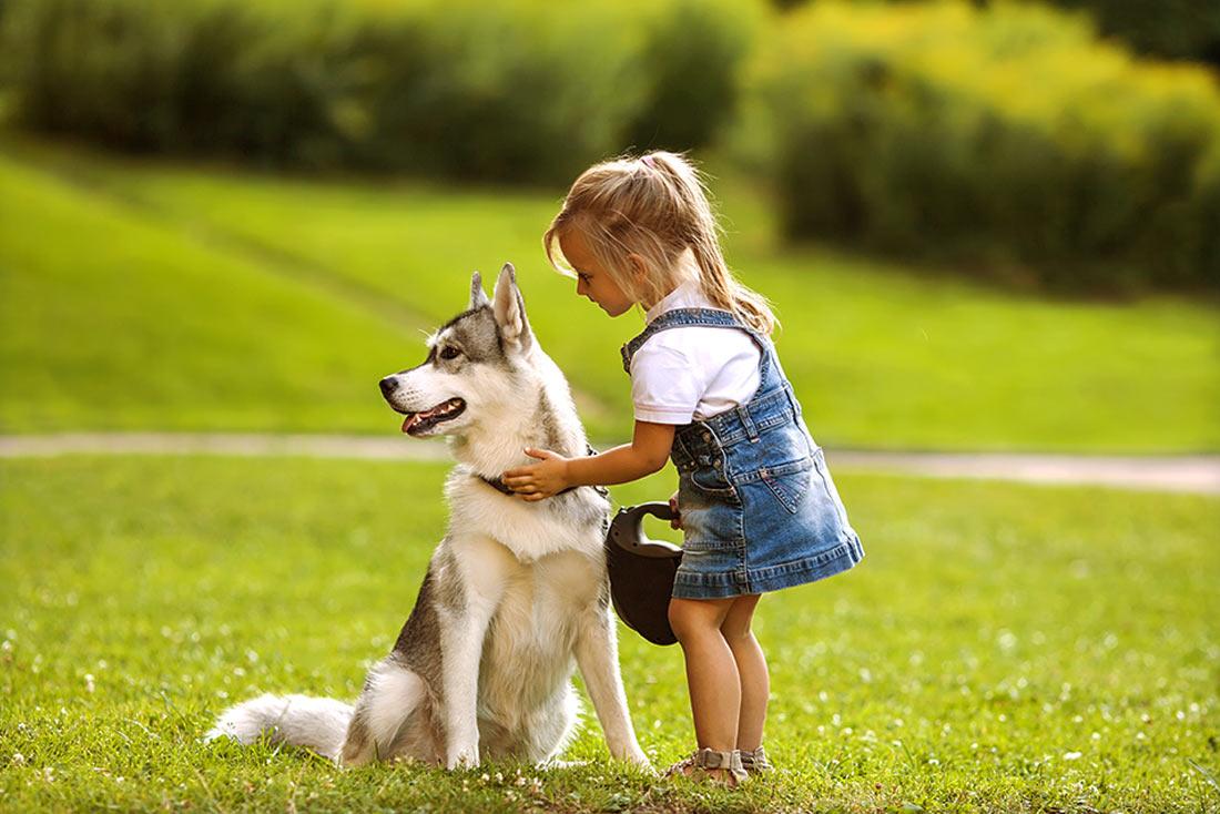 pozikan adiestramiento canino cognitivo emocional vitoria